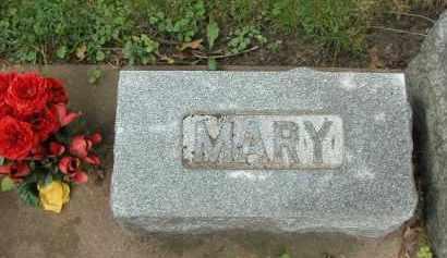 SHOGER, MARY - Kendall County, Illinois | MARY SHOGER - Illinois Gravestone Photos