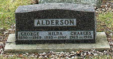 ALDERSON, GEORGE - La Salle County, Illinois | GEORGE ALDERSON - Illinois Gravestone Photos