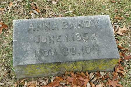 BANDY, ANNA - La Salle County, Illinois | ANNA BANDY - Illinois Gravestone Photos