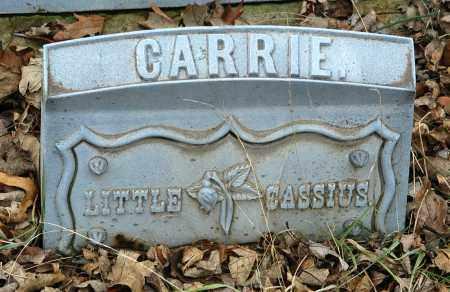 BLANCHARD, CARRIE - La Salle County, Illinois | CARRIE BLANCHARD - Illinois Gravestone Photos