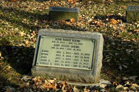FAILING, MARY - La Salle County, Illinois | MARY FAILING - Illinois Gravestone Photos