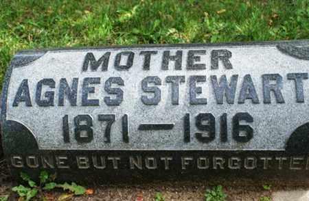 STEWART, AGNES - Lake County, Illinois | AGNES STEWART - Illinois Gravestone Photos