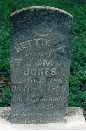 JONES, NETTIE A. - Lawrence County, Illinois | NETTIE A. JONES - Illinois Gravestone Photos