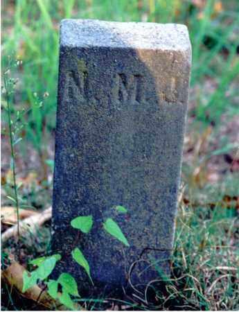 JONES, NELLIE M. - Marion County, Illinois | NELLIE M. JONES - Illinois Gravestone Photos