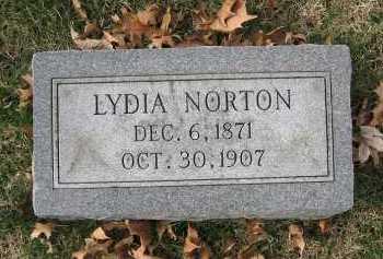 BIERMANN NORTON, LYDIA BERTHA - Marion County, Illinois | LYDIA BERTHA BIERMANN NORTON - Illinois Gravestone Photos