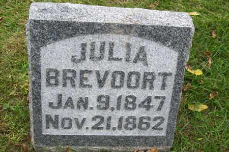 BREVOORT, JULIA - Marshall County, Illinois | JULIA BREVOORT - Illinois Gravestone Photos