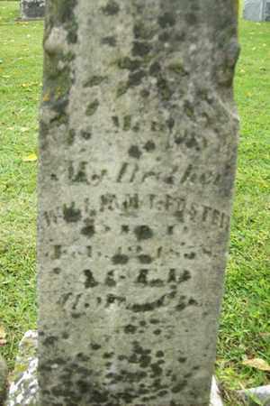 FOSTER, WILLIAM T. - Marshall County, Illinois | WILLIAM T. FOSTER - Illinois Gravestone Photos