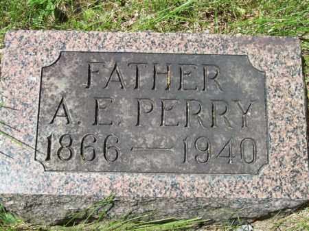 PERRY, A. E. - Marshall County, Illinois | A. E. PERRY - Illinois Gravestone Photos