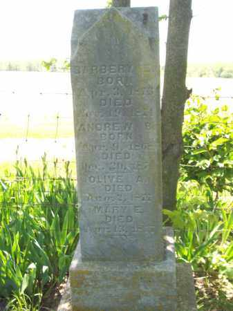 PERRY, ANDREW B. - Marshall County, Illinois | ANDREW B. PERRY - Illinois Gravestone Photos