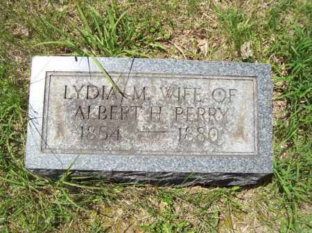 PERRY, LYDIA M. - Marshall County, Illinois | LYDIA M. PERRY - Illinois Gravestone Photos