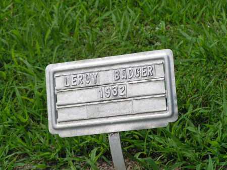 BADGER, LEROY - McDonough County, Illinois | LEROY BADGER - Illinois Gravestone Photos
