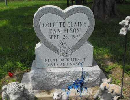 DANIELSON, COLETTE ELAINE - McDonough County, Illinois | COLETTE ELAINE DANIELSON - Illinois Gravestone Photos