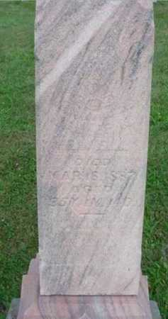 ELWELL, JAMES M. - McDonough County, Illinois | JAMES M. ELWELL - Illinois Gravestone Photos