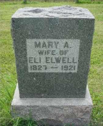 MCKEE ELWELL, MARY A. - McDonough County, Illinois | MARY A. MCKEE ELWELL - Illinois Gravestone Photos