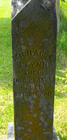 FLYNN, MICHAEL G. - McDonough County, Illinois | MICHAEL G. FLYNN - Illinois Gravestone Photos