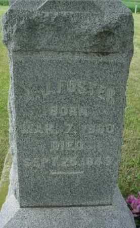 FOSTER, ARTHUR JOHN - McDonough County, Illinois | ARTHUR JOHN FOSTER - Illinois Gravestone Photos