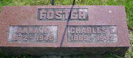 FOSTER, ANNA CATHERINE - McDonough County, Illinois | ANNA CATHERINE FOSTER - Illinois Gravestone Photos
