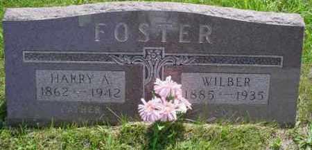 FOSTER, WILBER - McDonough County, Illinois | WILBER FOSTER - Illinois Gravestone Photos