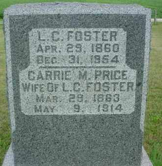 PRICE FOSTER, CARRIE MAY - McDonough County, Illinois | CARRIE MAY PRICE FOSTER - Illinois Gravestone Photos