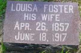 FOSTER, LOUISA - McDonough County, Illinois | LOUISA FOSTER - Illinois Gravestone Photos