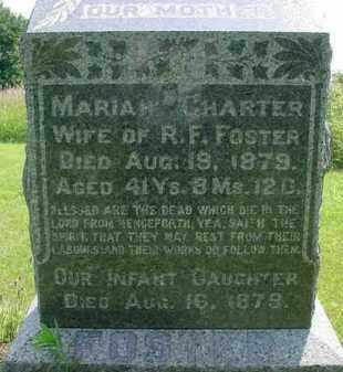FOSTER, MARIA - McDonough County, Illinois | MARIA FOSTER - Illinois Gravestone Photos