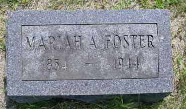 FOSTER, MARIAH A. - McDonough County, Illinois | MARIAH A. FOSTER - Illinois Gravestone Photos