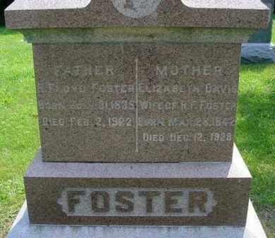 FOSTER, ELIZABETH - McDonough County, Illinois | ELIZABETH FOSTER - Illinois Gravestone Photos