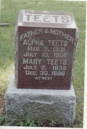 TEETS, MARY - McDonough County, Illinois | MARY TEETS - Illinois Gravestone Photos