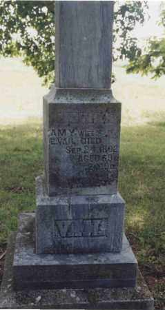 VAIL, AMY - McDonough County, Illinois | AMY VAIL - Illinois Gravestone Photos