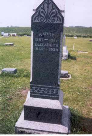 SIMCOX BAILEY, ELIZABETH - Mercer County, Illinois | ELIZABETH SIMCOX BAILEY - Illinois Gravestone Photos
