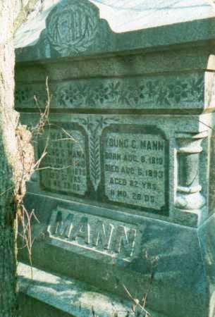 MANN, MARY - Mercer County, Illinois | MARY MANN - Illinois Gravestone Photos