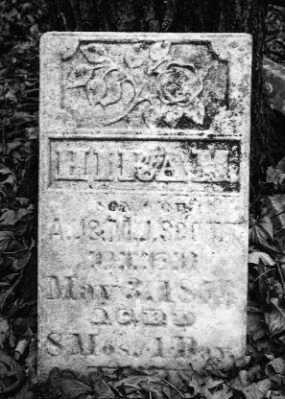 SCOTT, HIRAM - Mercer County, Illinois | HIRAM SCOTT - Illinois Gravestone Photos