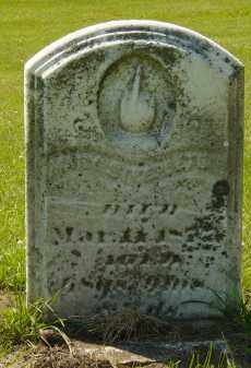 STEEPLETON, MARY - Mercer County, Illinois | MARY STEEPLETON - Illinois Gravestone Photos