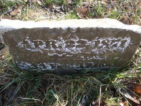 HOLIDAY AUSMUS, HANNAH A. - Morgan County, Illinois | HANNAH A. HOLIDAY AUSMUS - Illinois Gravestone Photos