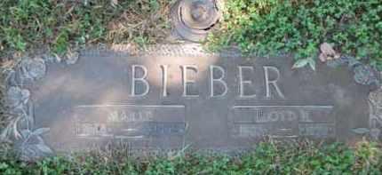 BIEBER, LLOYD HERMAN - Morgan County, Illinois | LLOYD HERMAN BIEBER - Illinois Gravestone Photos