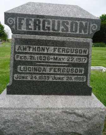 FERGUSON, LUCINDA - Morgan County, Illinois | LUCINDA FERGUSON - Illinois Gravestone Photos