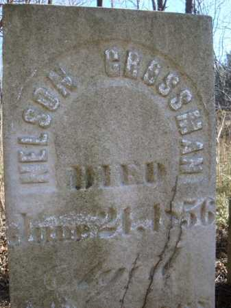 GROSSMAN, NELSON - Morgan County, Illinois | NELSON GROSSMAN - Illinois Gravestone Photos
