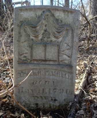 HAMILTON, BENJAMIN - Morgan County, Illinois | BENJAMIN HAMILTON - Illinois Gravestone Photos