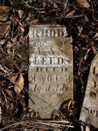 LEEDS, RHODA - Morgan County, Illinois | RHODA LEEDS - Illinois Gravestone Photos