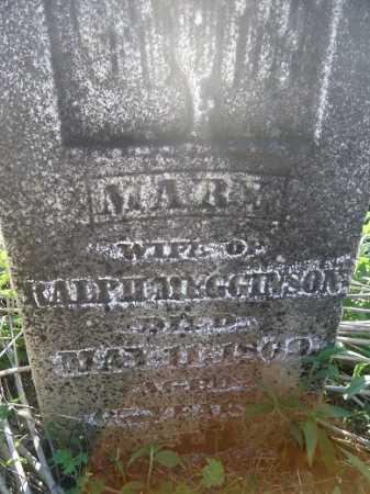 MEGGINSON, MARY - Morgan County, Illinois | MARY MEGGINSON - Illinois Gravestone Photos