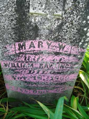RAWLINGS, MARY W. - Morgan County, Illinois | MARY W. RAWLINGS - Illinois Gravestone Photos