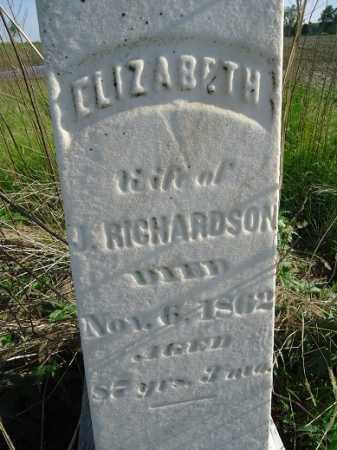 RICHARDSON, ELIZABETH - Morgan County, Illinois | ELIZABETH RICHARDSON - Illinois Gravestone Photos