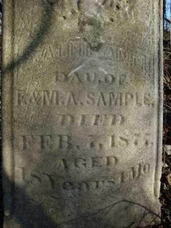 SAMPLE, (SALLIE)?  ANN - Morgan County, Illinois | (SALLIE)?  ANN SAMPLE - Illinois Gravestone Photos
