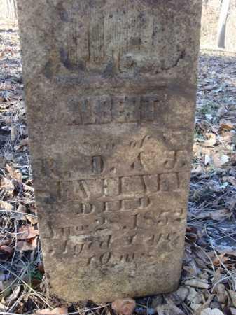 SENTENEY, ALBERT - Morgan County, Illinois | ALBERT SENTENEY - Illinois Gravestone Photos