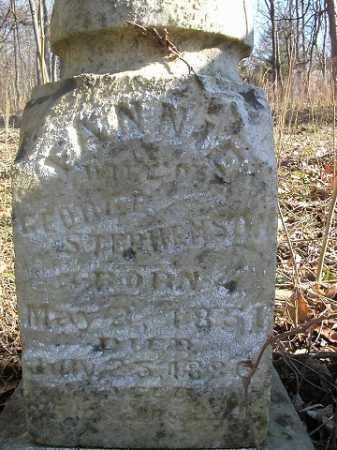 STEPHENSON, FANNIE - Morgan County, Illinois | FANNIE STEPHENSON - Illinois Gravestone Photos