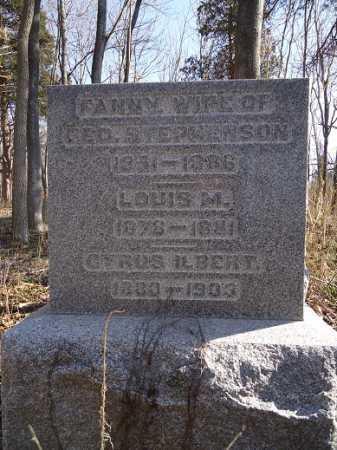 STEPHENSON, FANNY - Morgan County, Illinois | FANNY STEPHENSON - Illinois Gravestone Photos