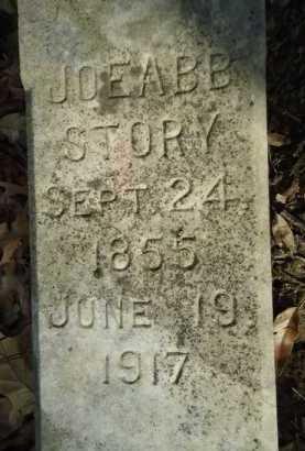 STORY, JOEABB - Morgan County, Illinois | JOEABB STORY - Illinois Gravestone Photos