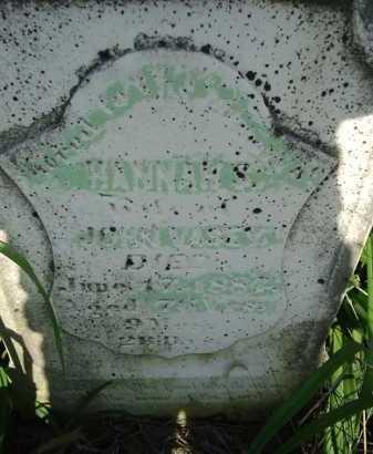 VASEY, HANNAH S. - Morgan County, Illinois   HANNAH S. VASEY - Illinois Gravestone Photos