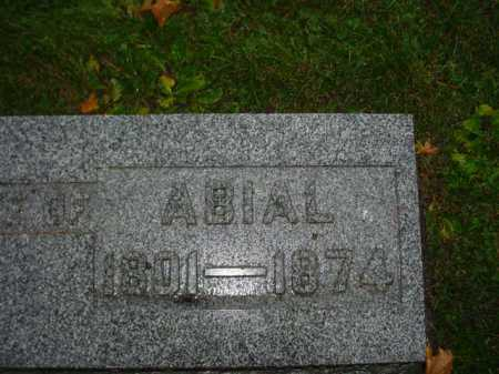 BROWN, ABIAL - Ogle County, Illinois   ABIAL BROWN - Illinois Gravestone Photos