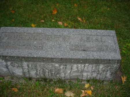 BROWN, PRUDENCE - Ogle County, Illinois | PRUDENCE BROWN - Illinois Gravestone Photos